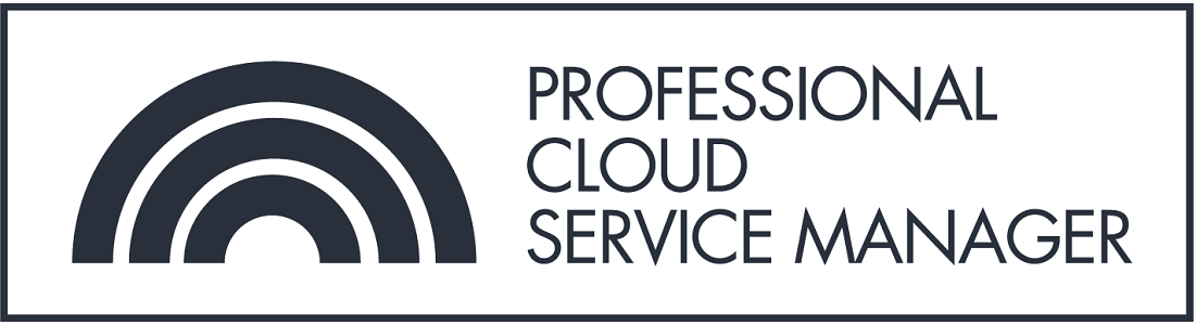 Professional Cloud Service Manager
